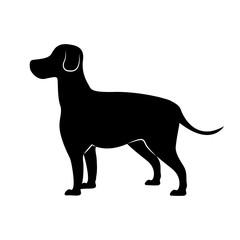 cute dog silhouette icon