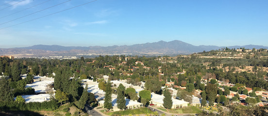 panoramic view of the Palm Springs