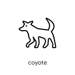 Coyote icon. Trendy modern flat linear vector Coyote icon on white background from thin line animals collection