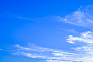 blue sky with tiny clouds. environment concept.