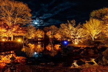 群馬県藤岡市、桜山公園のライトアップと満月