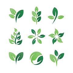 Leaf logo collection