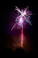 Firework Burst at Night