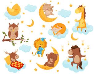 Cute little animals sleeping under a starry sky set, lovely chicken, cat, giraffe, horse, bear, deer, owl sleeping on clouds, good night design element, sweet dreams vector Illustration