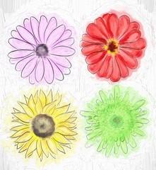 flower post card illustration