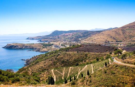 Landscape near Banyuls sur Mer, Pyrenees Orientales, Roussillon, Vermilion coast, France