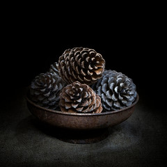 Pine cones in bowl on hessian, dark still life. Square crop light painting.