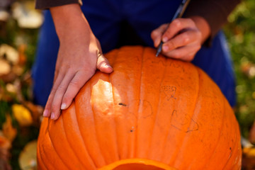 Close-up of a Boy making a Halloween pumpkin in the garden, United States