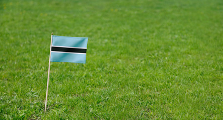Botswana flag. Photo of Botswana flag on a green grass lawn background. Close up of national flag waving outdoors.