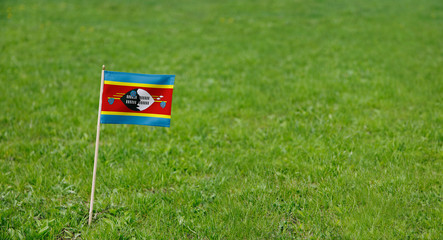 Eswatini flag. Photo of  Eswatini flag on a green grass lawn background. Close up of national flag waving outdoors.