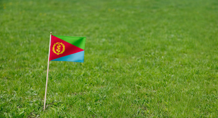 Eritrea flag. Photo of Eritrean flag on a green grass lawn background. Close up of national flag waving outdoors.