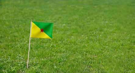 French Guiana flag. Photo of French Guiana flag on a green grass lawn background. Close up of national flag waving outdoors.