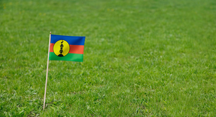 New Caledonia flag. Photo of Kanak flag on a green grass lawn background. Close up of national flag waving outdoors.