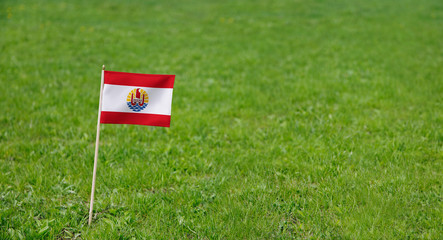 French Polynesia flag. Photo of French Polynesia flag on a green grass lawn background. Close up of national flag waving outdoors.