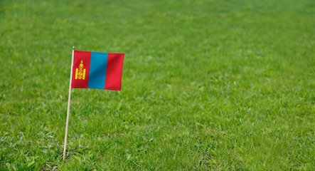 Mongolia flag. Photo of Mongolian flag on a green grass lawn background. Close up of national flag waving outdoors.