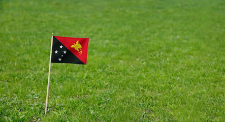 Papua New Guinea flag. Photo of a flag on a green grass lawn background. Close up of national flag waving outdoors.