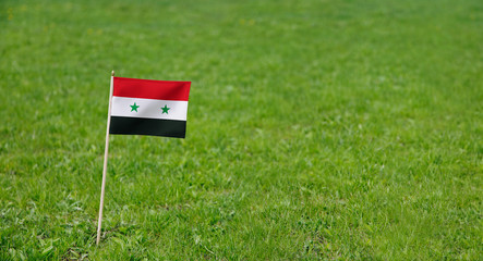 Syria flag. Photo of Syrian flag on a green grass lawn background. Close up of national flag waving outdoors.