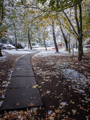 the first snow which dropped out on city streets