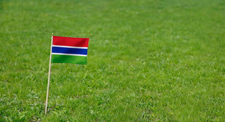 Gambia flag. Photo of  Gambian flag on a green grass lawn background. Close up of national flag waving outdoors.