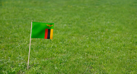 Zambia flag. Photo of Zambia flag on a green grass lawn background. Close up of national flag waving outdoors.