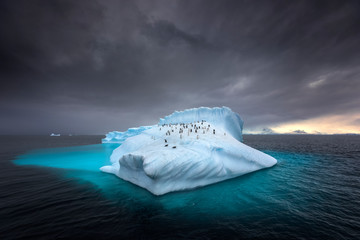 Papiers peints Antarctique Penguins on a giant iceberg in Antarctica