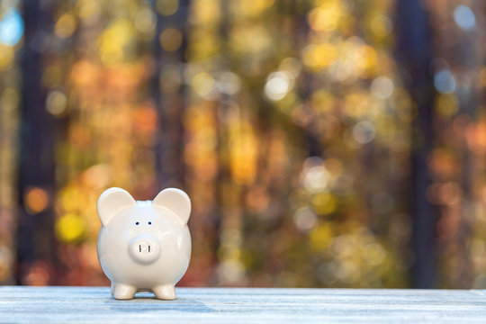 Piggy bank on a fall forest background with fall savings theme