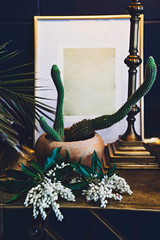 White flowers and a cactus plant on a table
