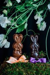 Two chocolate bunnies on display