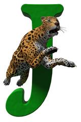 J is for Jaguar