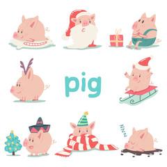 Printed kitchen splashbacks Illustrations Funny Christmas pig vector cartoon character set isolated on white background. Animal symbol of 2019 Chinese New Year.