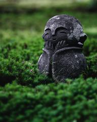 京都 日本 苔