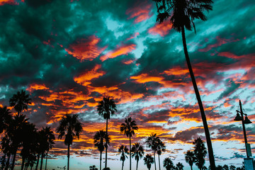 Colorful clouds hovering over palm trees