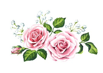 Pink rose and gypsophila composition. Watercolor hand drawn illustration,  isolated on white background