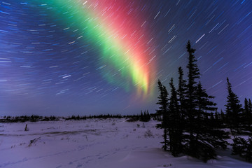 Fototapete - Northern Lights And Star Trails