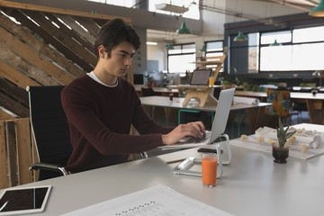 Male executive working on laptop