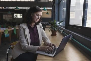 Female executive working on laptop