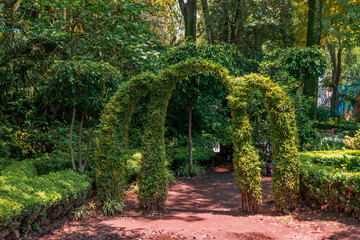 Green natural leaves arch