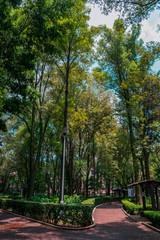 Longshot of a green park