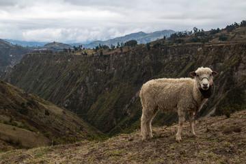 Splendidi panorami durante il trekking alla laguna di Quilotoa, Ecuador