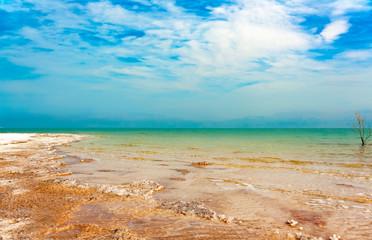 The picturesque shoreline of the Dead sea