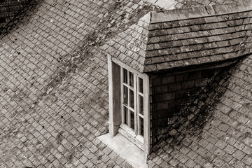 photo of beautiful window on the roof covered with yellow moss in close-up . Image in black and white color style
