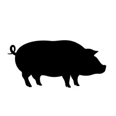 Pig vector icon