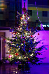 Christmas tree and glowing lights