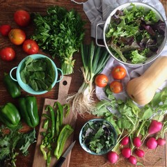 Overhead view of vegetables on wooden table