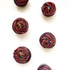 Overhead view of chocolate cupcakes on white background