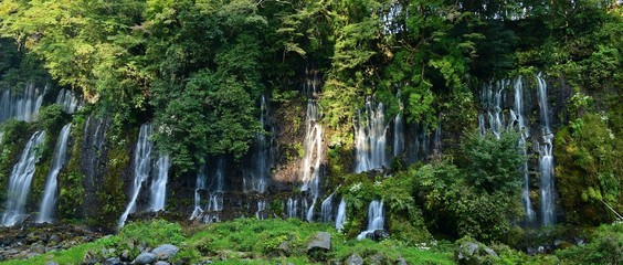 光を浴びて輝く白糸の滝@富士宮 静岡
