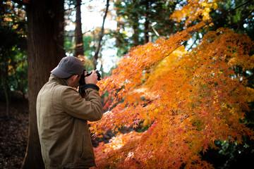 紅葉を撮影する男性