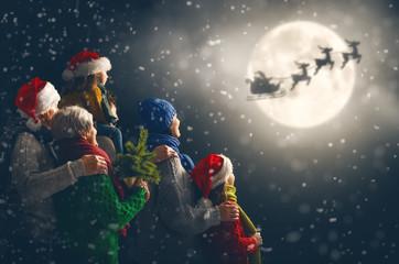 Family enjoying Christmas