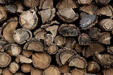 Firewood at garden
