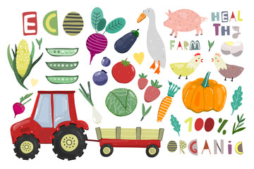 Big farm set. Cartoon vector collection. All elements are isolated